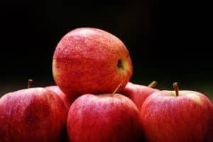 Uni Graz: Kostenanstieg durch Klimawandel für Apfelanbau berechnet