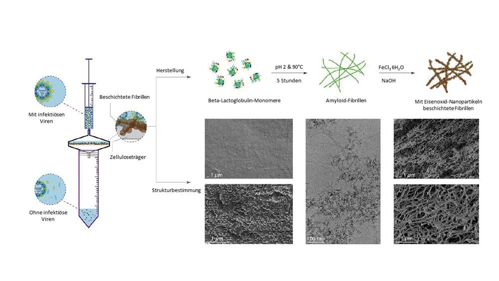 Schema der Herstellung und Anwendung der Filtermembran | Grafik: aus Palika A et al, Nature Nanotechnology, 2021