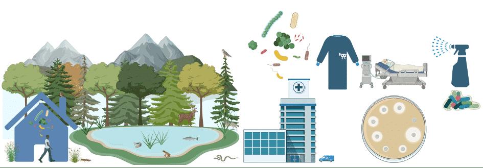 Mikrobiom Forschung: Gegenüberstellung der Einflüsse auf die mikrobiellen Gemeinschaften von natürlichen Innenräumen und einer Krankenhausumgebung. | Grafik: TU Graz