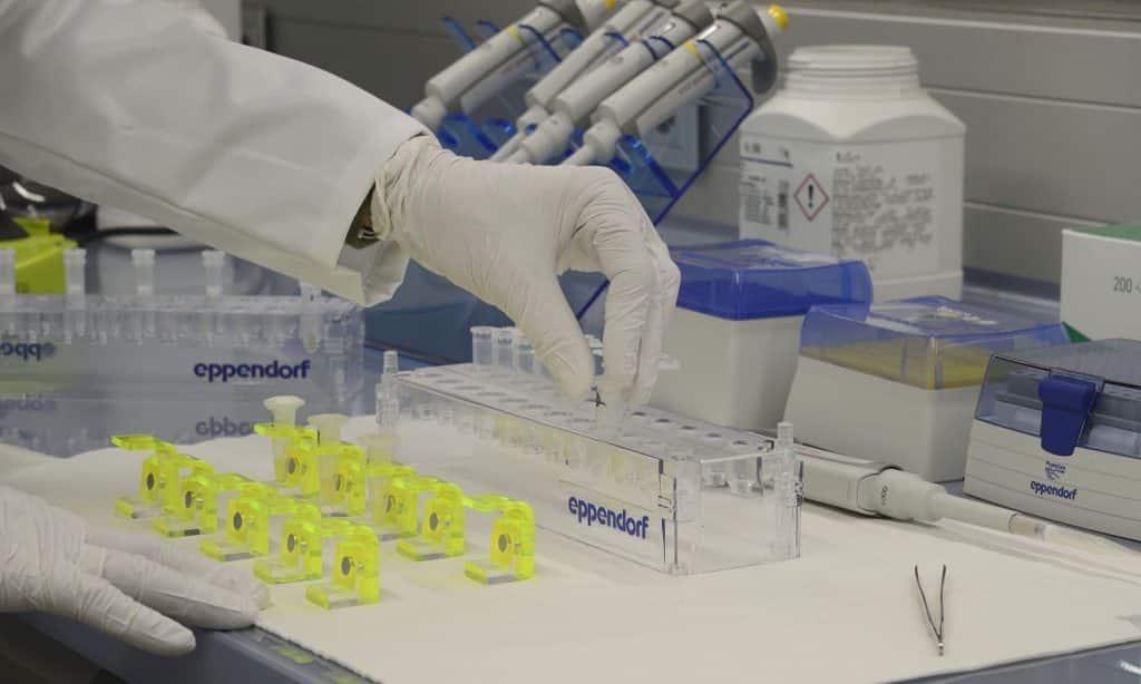 DNA Barcoding | Foto: abol.ac.at